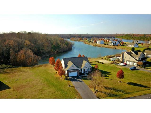 22493 Lakeshore Drive, Georgetown, DE 19947 (MLS #725865) :: The Rhonda Frick Team