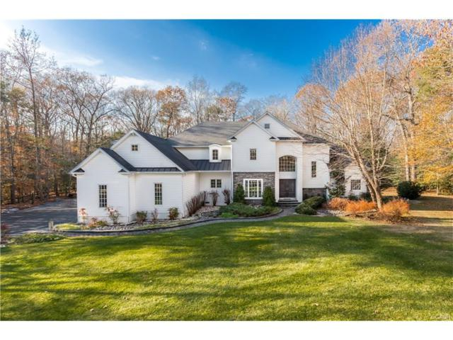718 Phillips Hill, Millsboro, DE 19966 (MLS #725908) :: The Don Williams Real Estate Experts