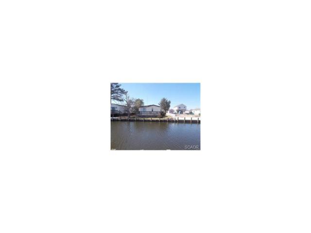 37048 Blue Teal, Selbyville, DE 19975 (MLS #726160) :: The Rhonda Frick Team