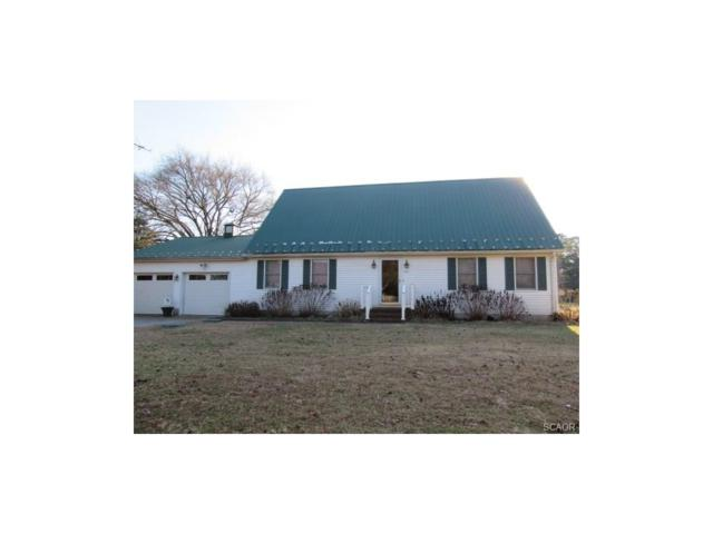 601 Shady Lane, Bethel, DE 19931 (MLS #726279) :: The Rhonda Frick Team