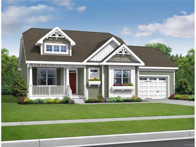 29625 Martin Van Buren Dr, Millsboro, DE 19966 (MLS #726308) :: The Don Williams Real Estate Experts