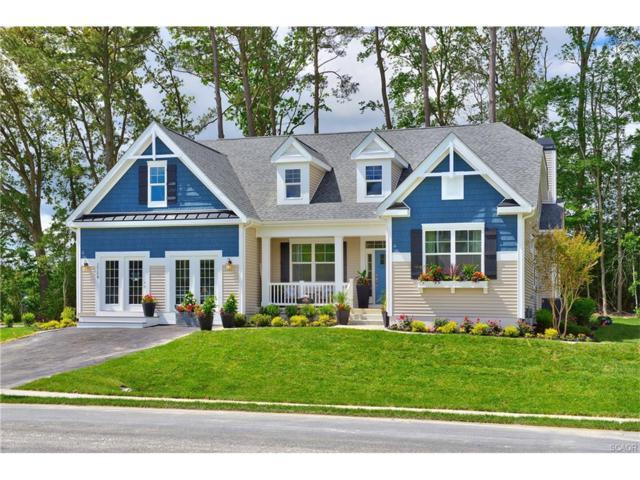 29615 Martin Van Buren Dr, Millsboro, DE 19966 (MLS #726312) :: The Don Williams Real Estate Experts