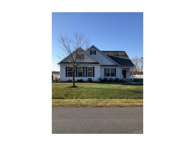 23127 Pine Run, Millsboro, DE 19966 (MLS #726317) :: The Don Williams Real Estate Experts