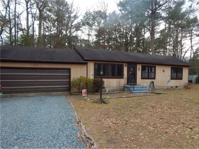 32317 Downing Road, Delmar (Wicomico), MD 21875 (MLS #726357) :: RE/MAX Coast and Country