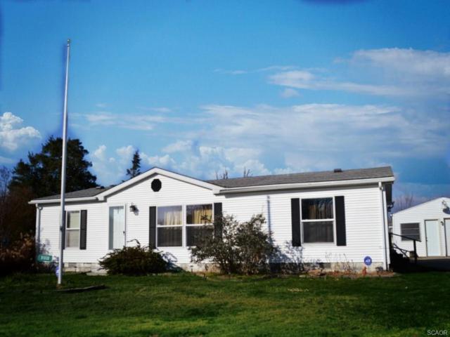 31533 Trenton Street, Ocean View, DE 19970 (MLS #726475) :: The Allison Stine Team