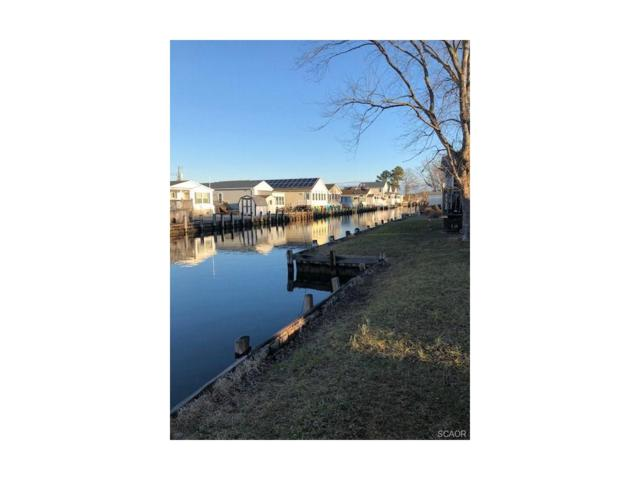 37813 Swann, Selbyville, DE 19975 (MLS #726565) :: Barrows and Associates