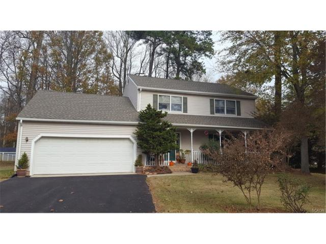 23 South Shore, Lincoln, DE 19960 (MLS #726634) :: The Don Williams Real Estate Experts