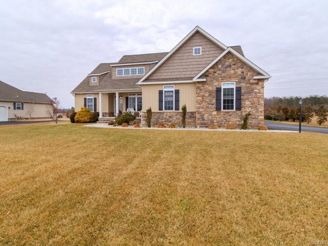 23851 Dakotas Reach, Milton, DE 19968 (MLS #726690) :: The Don Williams Real Estate Experts