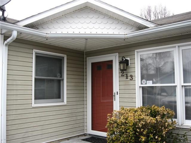 213 Magnolia Drive, Millsboro, DE 19966 (MLS #726799) :: The Don Williams Real Estate Experts