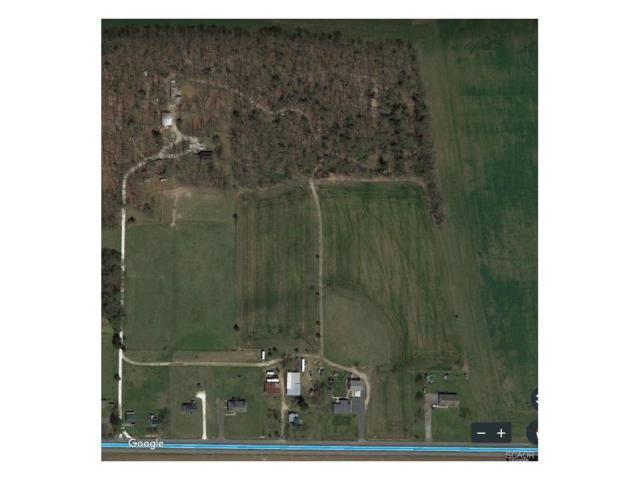 0 Milton Ellendale, Milton, DE 19968 (MLS #727000) :: RE/MAX Coast and Country