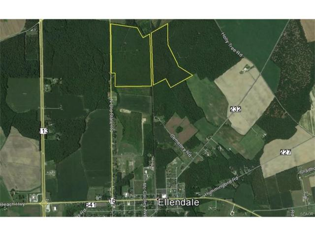 0000 North Old State Road, Ellendale, DE 19941 (MLS #727086) :: Barrows and Associates