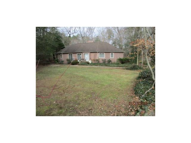 19748 Toby Run, Lewes, DE 19958 (MLS #727198) :: The Don Williams Real Estate Experts