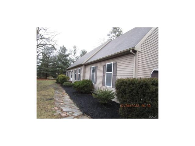 25162 Pine Road, Seaford, DE 19973 (MLS #727332) :: The Rhonda Frick Team