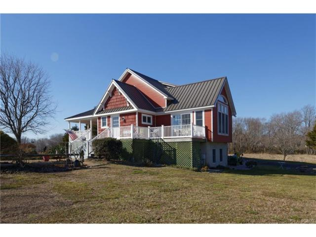 30046 Memory, Frankford, DE 19945 (MLS #727341) :: RE/MAX Coast and Country