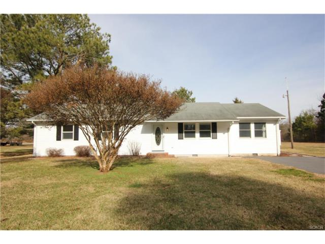12091 Line Rd, Delmar (Sussex), DE 19940 (MLS #727403) :: Brandon Brittingham's Team