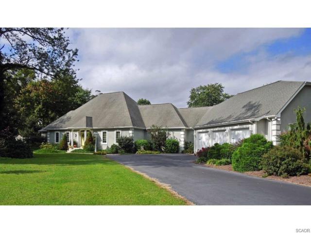 120 Creekside Drive, Dagsboro, DE 19939 (MLS #727433) :: RE/MAX Coast and Country