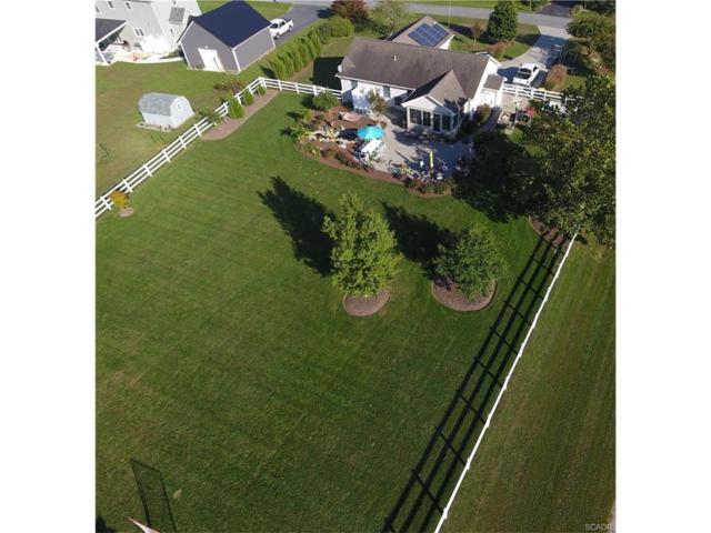 113 Falls Road, Milton, DE 19968 (MLS #727555) :: The Don Williams Real Estate Experts