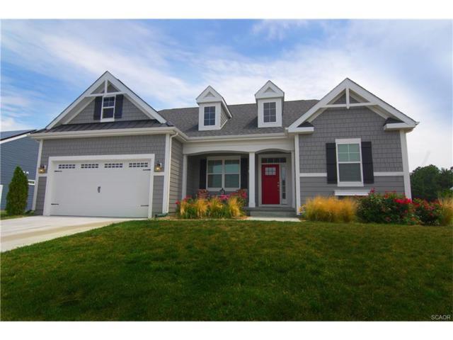 110 Nellie, Milton, DE 19968 (MLS #727580) :: The Don Williams Real Estate Experts