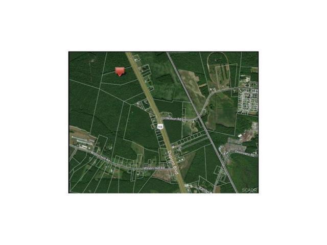 13.29 acres S. Dupont Highway, Georgetown, DE 19947 (MLS #727612) :: The Rhonda Frick Team