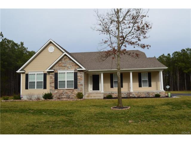 25538 Hunter Crossing, Millsboro, DE 19966 (MLS #727695) :: Barrows and Associates