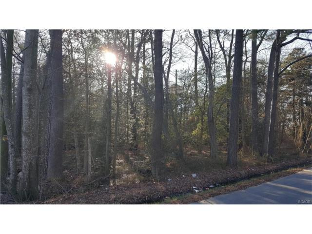 Lot 83 Dagsboro Road, Dagsboro, DE 19939 (MLS #727814) :: The Don Williams Real Estate Experts