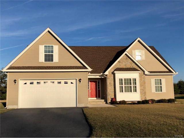11397 Eagle Run, Lincoln, DE 19960 (MLS #727861) :: Barrows and Associates