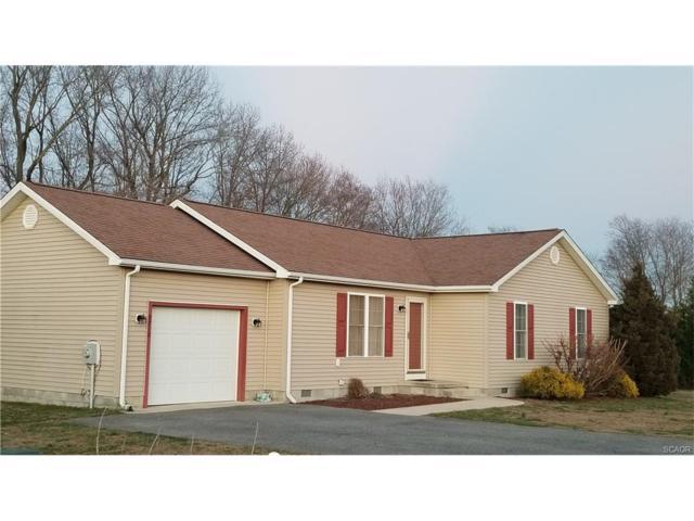 9716 Hidden Branch Lane, Lincoln, DE 19960 (MLS #727896) :: Barrows and Associates