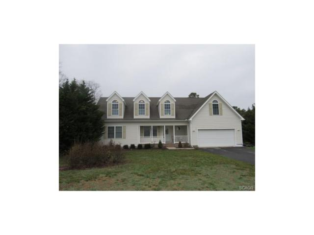 16858 Oak Road, Bridgeville, DE 19933 (MLS #728017) :: The Rhonda Frick Team