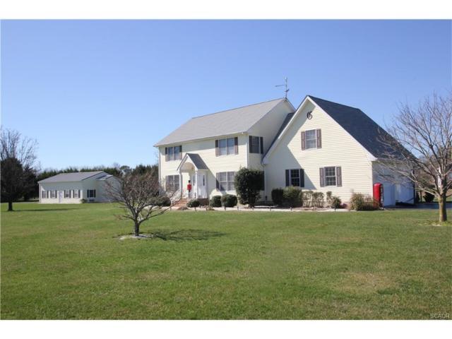 116 N Paula Lynne, Seaford, DE 19973 (MLS #728263) :: The Don Williams Real Estate Experts