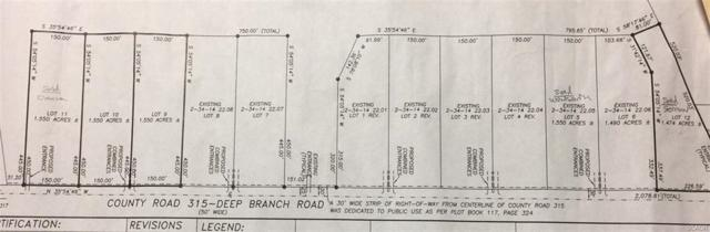 lot 3 Deep Branch, Georgetown, DE 19947 (MLS #728305) :: RE/MAX Coast and Country