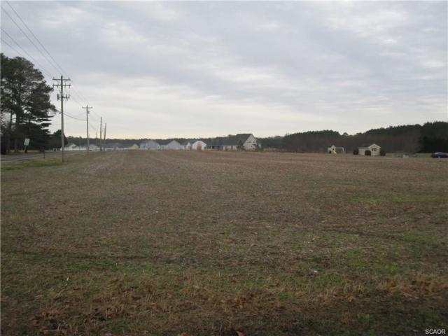 32 Zoar, Millsboro, DE 19947 (MLS #728439) :: The Rhonda Frick Team