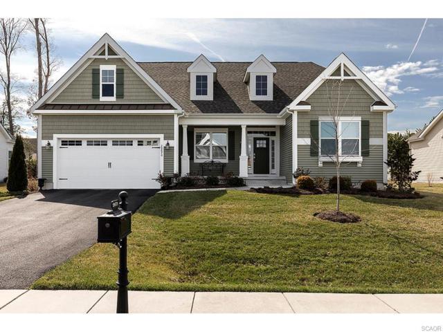 29670 Franklin Roosevelt Lane, Millsboro, DE 19966 (MLS #728452) :: The Don Williams Real Estate Experts
