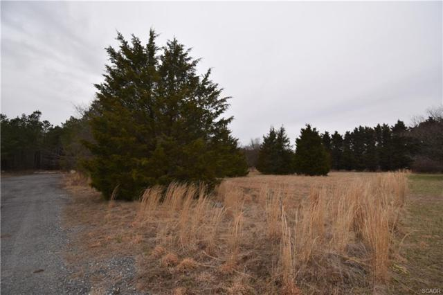 Lot 4 Anna Patrick Ln, Seaford, DE 19973 (MLS #728544) :: Atlantic Shores Realty