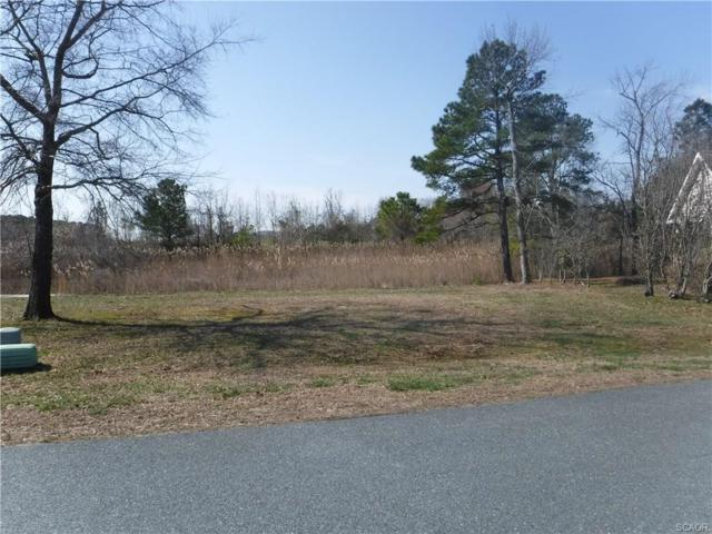 302 West Stoney Run #302, Selbyville, DE 19975 (MLS #728624) :: The Don Williams Real Estate Experts