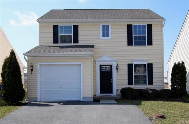 161 Bobbys Branch Road, Millsboro, DE 19966 (MLS #728663) :: The Don Williams Real Estate Experts