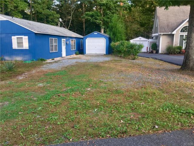 32746 Ashwood Drive, Lewes, DE 19958 (MLS #728784) :: The Don Williams Real Estate Experts