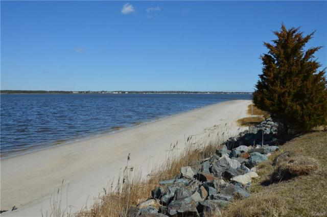 34390 Indian River Dr, Dagsboro, DE 19939 (MLS #728906) :: The Allison Stine Team
