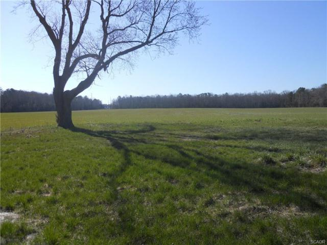 23121 Hollyville Road, Harbeson, DE 19951 (MLS #728912) :: Barrows and Associates
