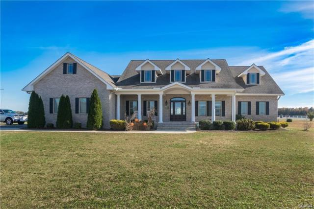 23457 Rementer Road, Georgetown, DE 19947 (MLS #729086) :: RE/MAX Coast and Country