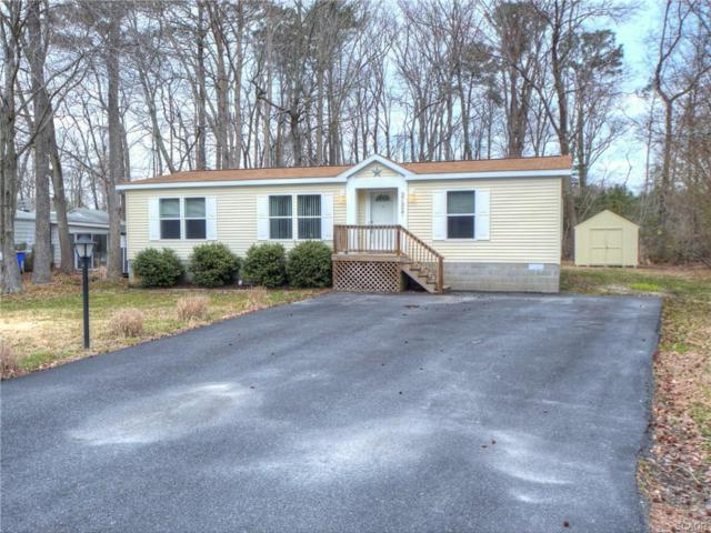 37327 Carolina, Frankford, DE 19945 (MLS #730116) :: Barrows and Associates