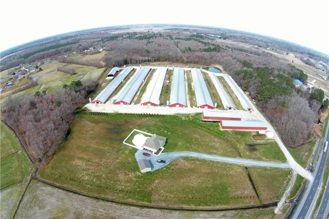 32738 Dupont, Dagsboro, DE 19939 (MLS #730175) :: Barrows and Associates