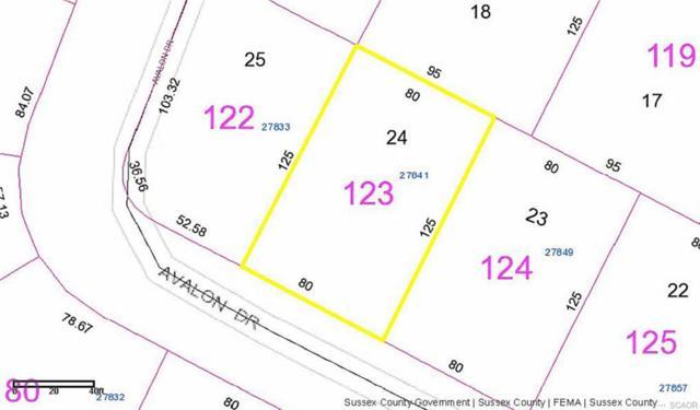 27841 Avalon Drive 24-E, Georgetown, DE 19947 (MLS #730187) :: Barrows and Associates