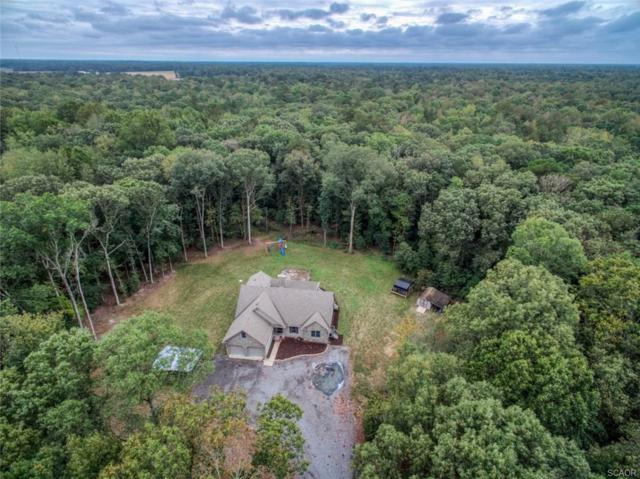 4318 Mount Holly, Greenwood (Sussex), DE 19950 (MLS #730677) :: RE/MAX Coast and Country