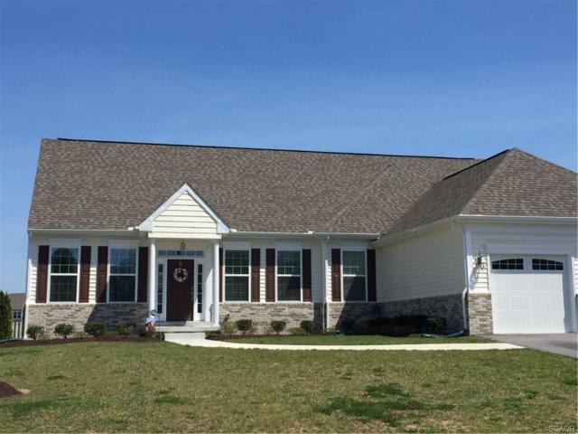 38543 Blue Hen, Selbyville, DE 19975 (MLS #730771) :: Compass Resort Real Estate