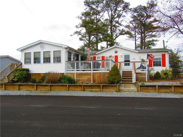 25972 Bald Cypress Street, Millsboro, DE 19966 (MLS #730783) :: The Allison Stine Team