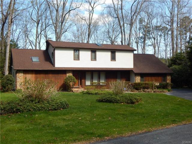 287 Pond Drive, Millsboro, DE 19966 (MLS #730834) :: Barrows and Associates