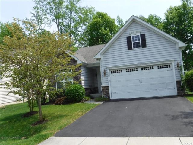 32254 Overlook, Millsboro, DE 19966 (MLS #731701) :: The Allison Stine Team