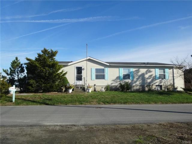 25835 Berry St, Millsboro, DE 19966 (MLS #731972) :: The Allison Stine Team