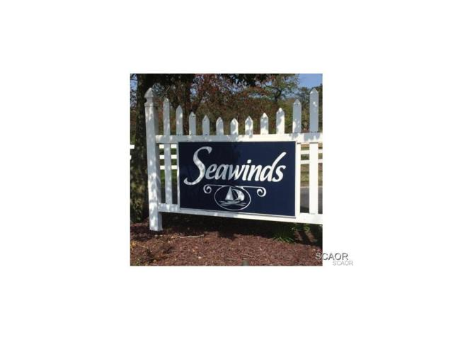 307 Baywinds Court, Dagsboro, DE 19939 (MLS #622170) :: The Don Williams Real Estate Experts