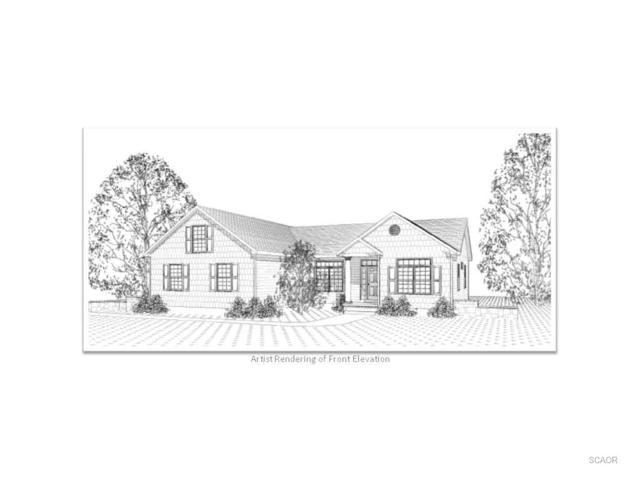 23342 Greenbank Dr, Harbeson, DE 19951 (MLS #701228) :: The Don Williams Real Estate Experts
